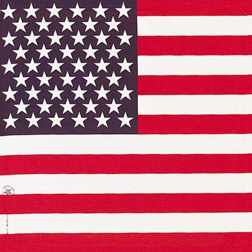 b22ame-000114_american_flag