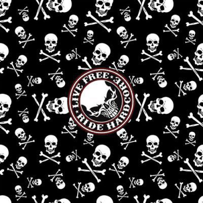 b22rou-000190_skull_and_crossbones
