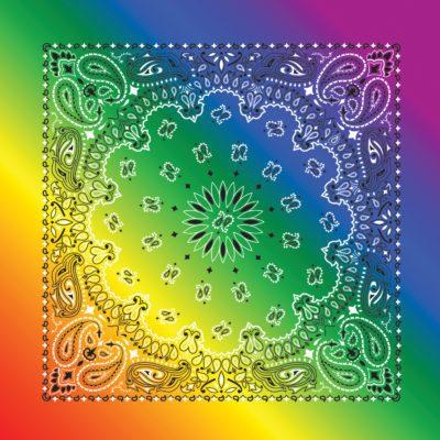 rainbow paisley B22Pai-100046